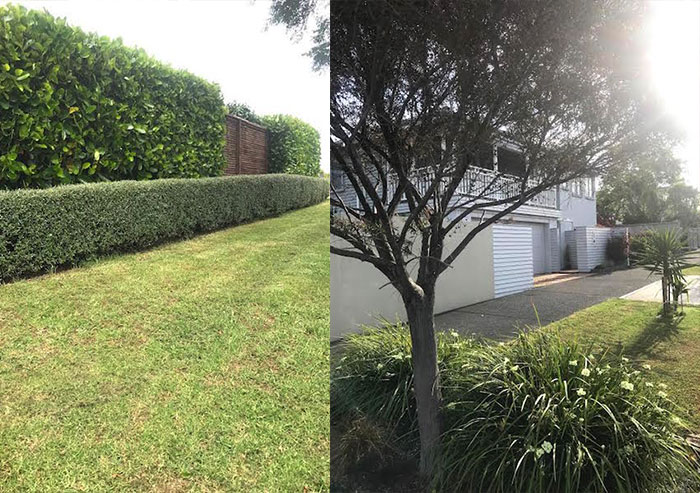 Manta ltd product and project specialists in auckland nz for Auckland landscaping services ltd